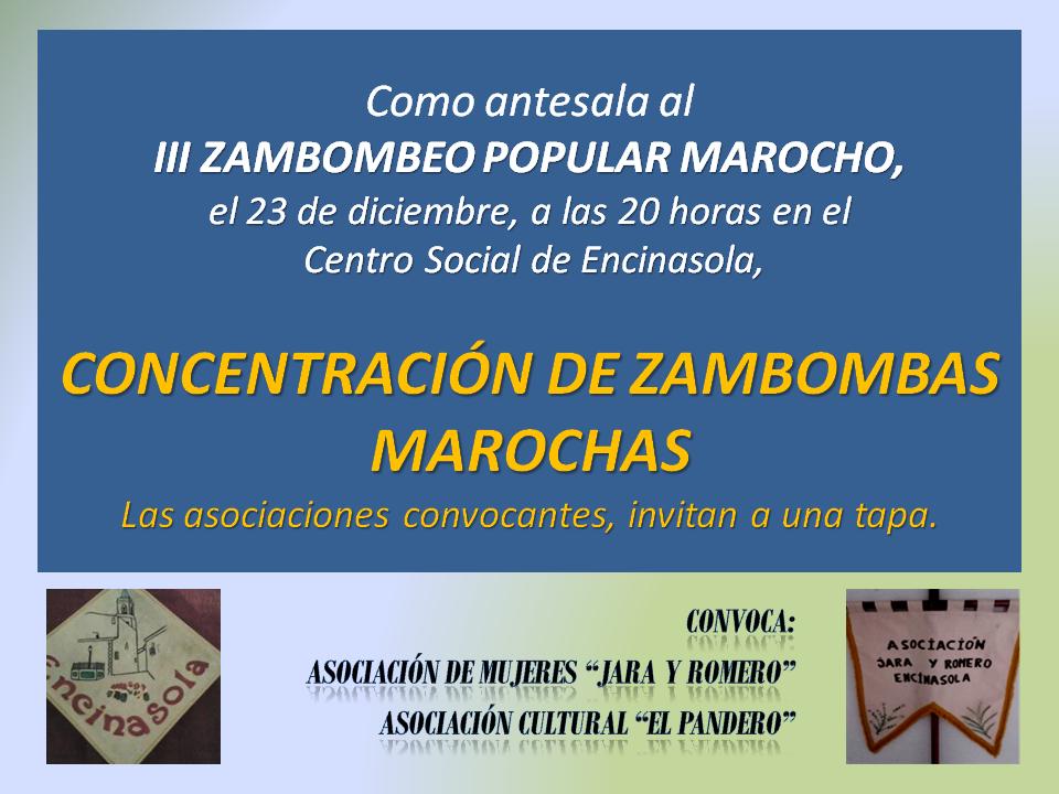 iii-concentracion-de-zambombas